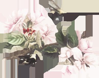 Bloemen behang ~ Walloha