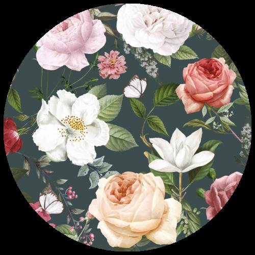 Behangcirkel Donkere rozen