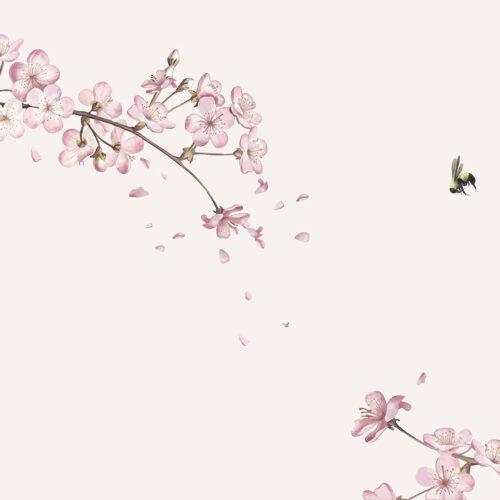 Bloemen behang Japanse kersenbloesem